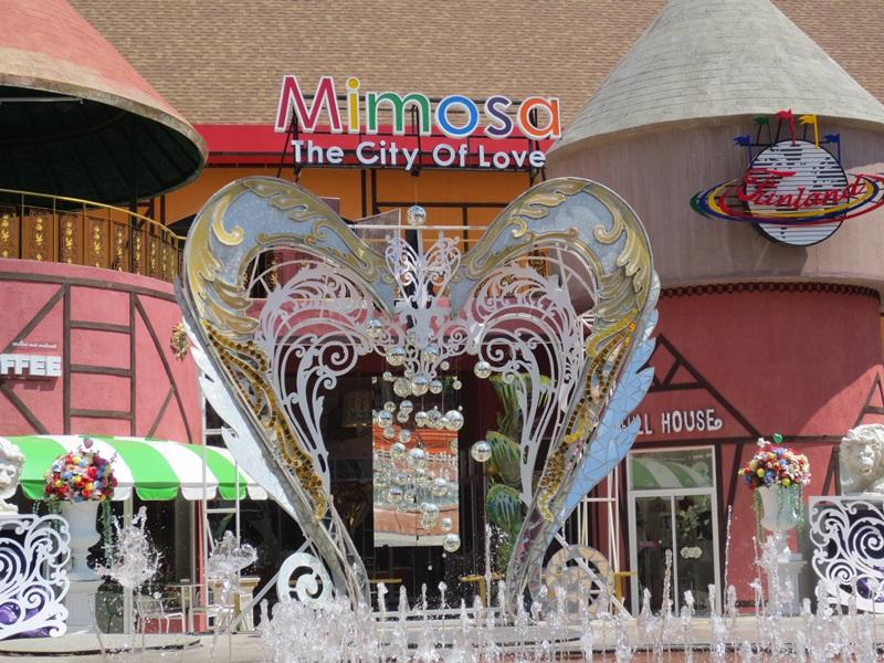 Mimosa City of Love